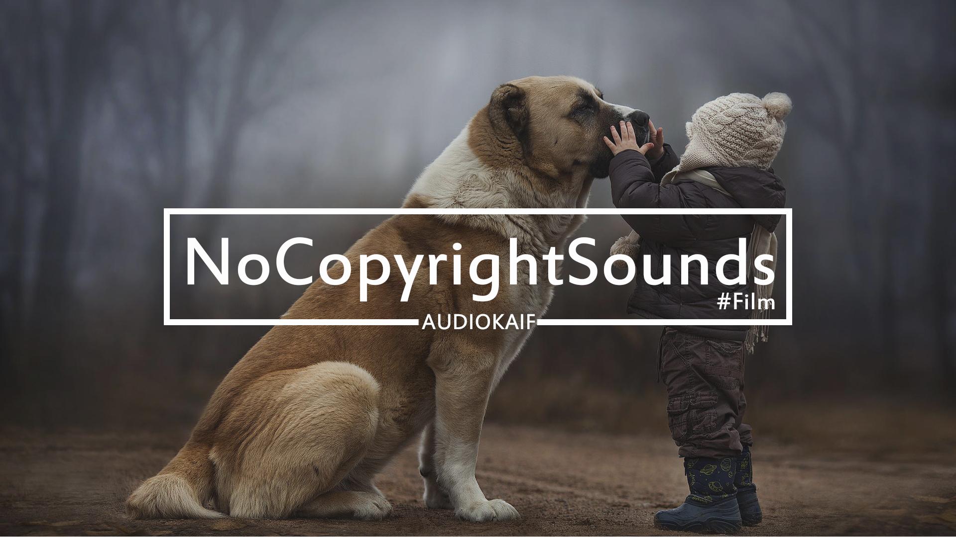 Музыка без авторского права | We Go Beyond | Film